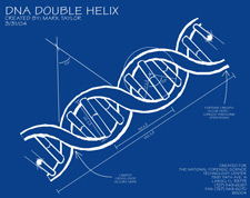 Forensic dna training image of a blueprint of the double helix malvernweather Images